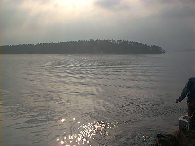 Utøya sett fra landsida.